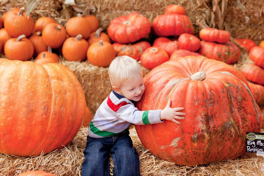 Fall Kid's Activities